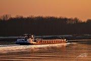 Herbert_Kuzel_an-der-Donau